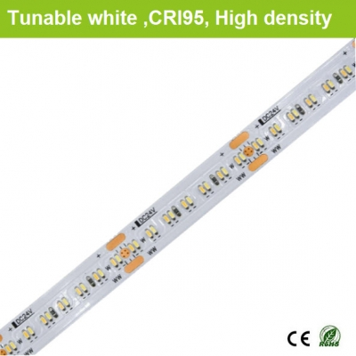 CRI95 Tunable white strips